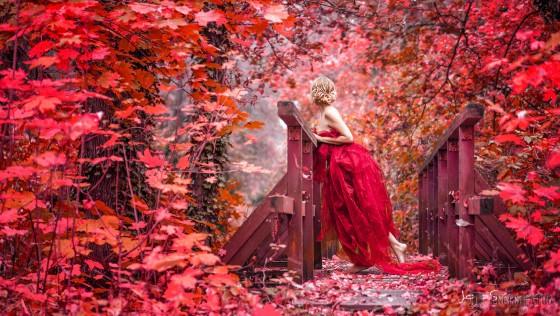 Диалог на тему «Осень (Autumn)»