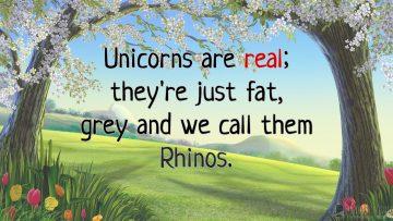 Единороги реальны!
