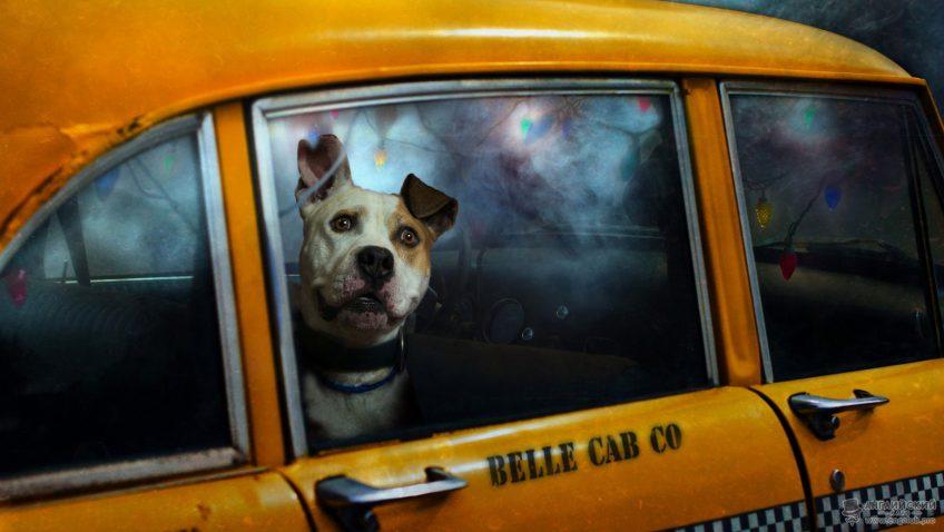 А вы знаете как разговаривать на английском в такси?